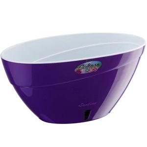 Samozavlažovací truhlík Calipso 24cm - 2 l fialová/bílá s vodoznakem