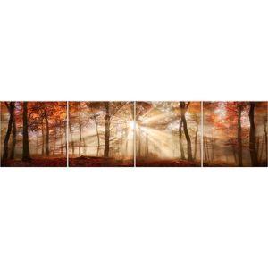 Skleněný panel 60/240 Forest-1 4-Elem